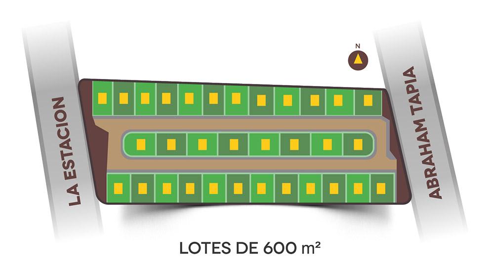 Distribución de Lotes - ANCALIA